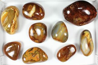 Buy Wholesale Lot: 11 Lbs Polished Carnelian Agate - 9 Pieces - #91852