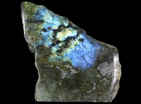 "6.6"" Tall, Single Side Polished Labradorite - Madagascar For Sale, #92030"