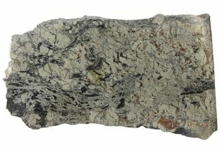 "Buy 3.25"" Polished Apache Gold (Chalcopyrite) Slab - Arizona - #93817"