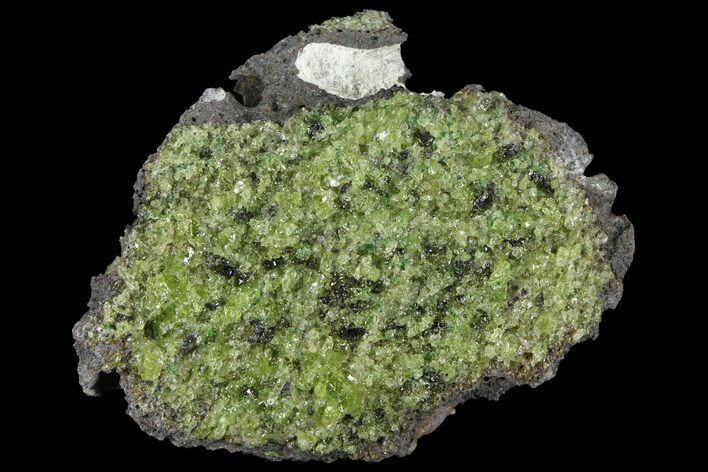 "3"" Peridot in Basalt - Arizona"