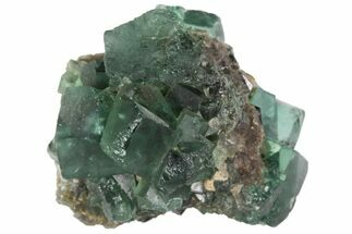 "Buy 1.42"" Fluorite Crystal Cluster -  Rogerley Mine - #94528"