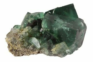 Fluorite  - Fossils For Sale - #94539