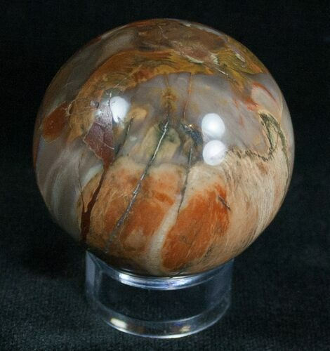 "1.65"" Colorful Petrified Wood Sphere"