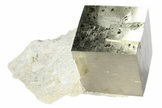 Pyrite - Fossils For Sale - #95640