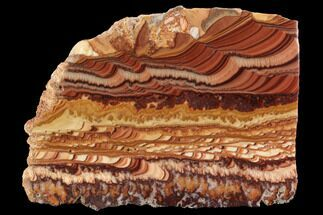 "Buy 5.7"" Polished Slab Of Rolling Hills Dolomite - Mexico - #96340"