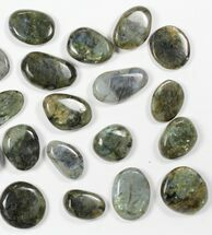 Labradorite - Fossils For Sale - #90627