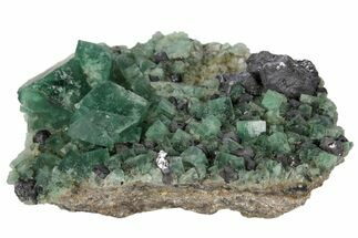 "2.8"" Fluorite and Galena Crystal Association -  Rogerley Mine For Sale, #97880"