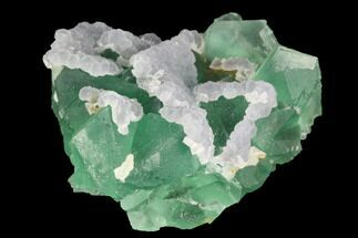 "Buy 2.1"" Green & Purple Fluorite Crystal Cluster - China - #98074"