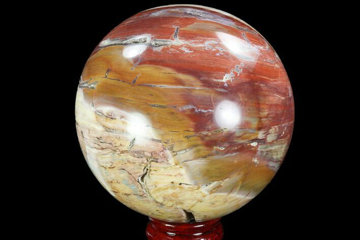 "4.4"" Colorful, Petrified Wood Sphere"