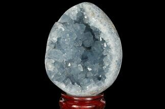 "Buy 4.35"" Crystal Filled Celestite ""Egg"" Geode - Madagascar - #98779"