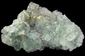 Fluorite & Quartz - Fossils For Sale - #99006