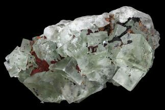 "Buy 2.5"" Blue-Green, Cubic Fluorite Crystal Cluster - Morocco - #98995"