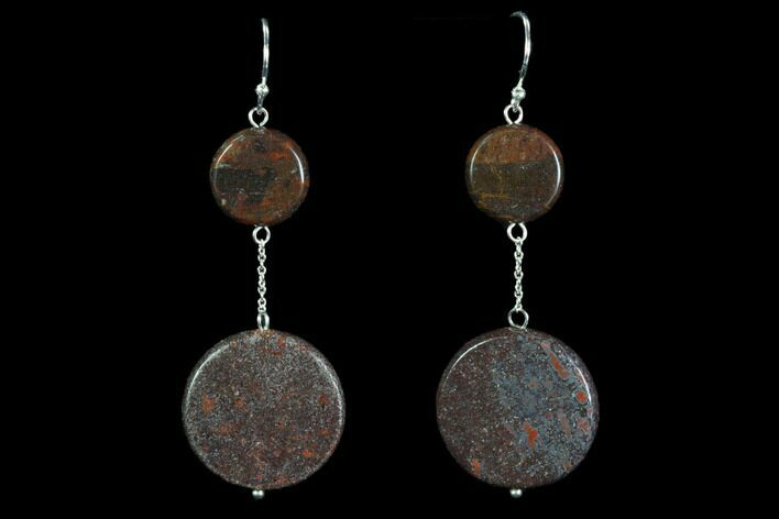 Polished Fossil Dinosaur Bone (Gembone) Earrings