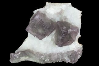 Fluorite & Quartz - Fossils For Sale - #100728