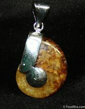 Whole Polished Ammonite Pendant For Sale, #1207