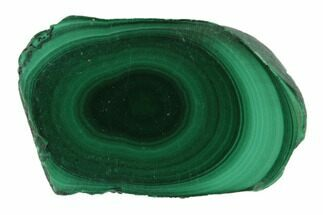 "Buy .9"" Polished Malachite Stalactite Slice - Congo - #101908"