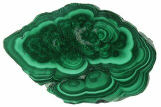 Malachite - Fossils For Sale - #101940