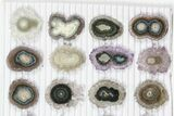 "Lot: ~1"" Amethyst Stalactite Slices (24 Pieces) - #101758-1"
