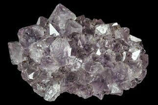 Quartz var. Amethyst  - Fossils For Sale - #102204