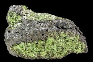 Forsterite var. Peridot - Fossils For Sale - #104010