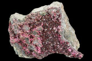 Erythrite - Fossils For Sale - #104058