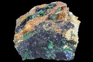 "Buy 6.8"" Large Malachite with Azurite Specimen (6.7 Lbs) - Morocco - #104071"