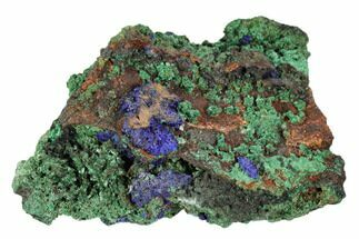 "2.9"" Sparkling Azurite and Malachite Crystal Cluster - Morocco For Sale, #104381"