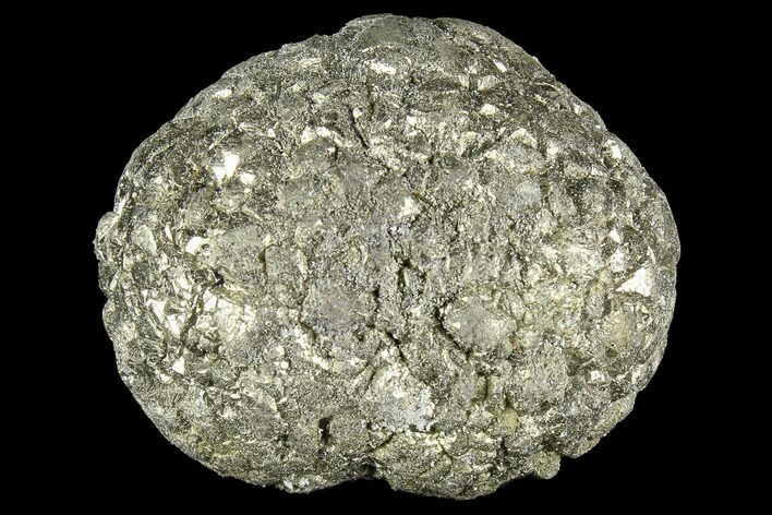 "1.3"" Natural Pyrite Concretion - China"