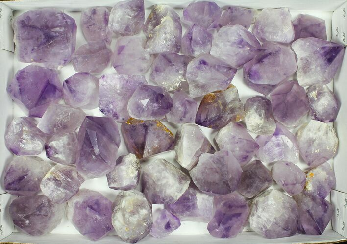 "Wholesale Lot: 1.5-3"" Amethyst Points - 50 Pieces"