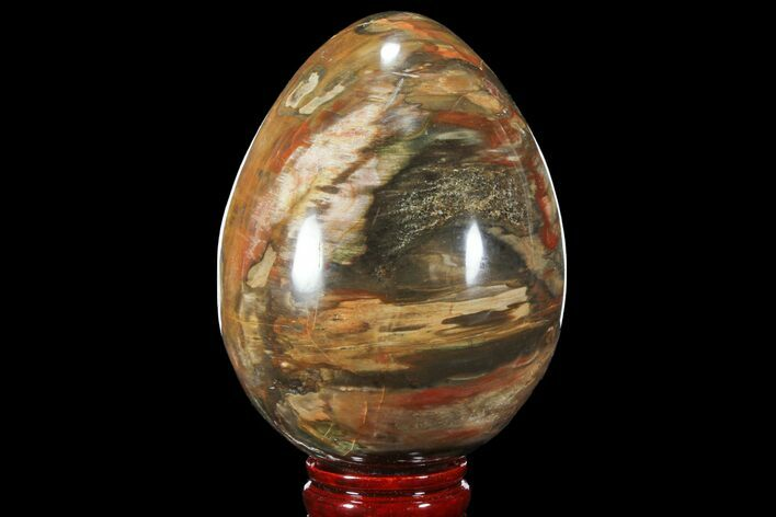 "5.6"" Colorful, Polished Petrified Wood ""Egg"" - Triassic"
