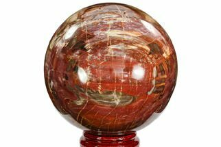 "Buy 6.5"" Colorful Petrified Wood Sphere - Madagascar - #106993"