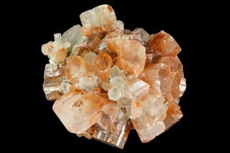 "2.1"" Aragonite Twinned Crystal Cluster - Morocco For Sale, #106601"