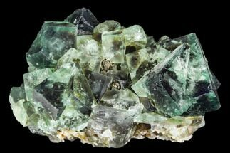 Fluorite  - Fossils For Sale - #106101