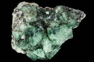 "1.85"" Fluorite Crystal Cluster -  Rogerley Mine For Sale, #106103"