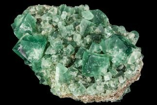 Fluorite  - Fossils For Sale - #106116