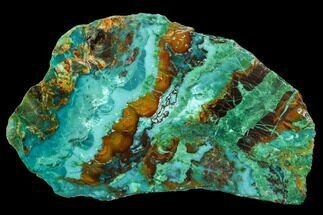 "Buy 2.4"" Polished Chrysocolla & Plume Malachite - Bagdad Mine, Arizona - #107404"