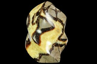 "Buy 4.1"" Polished Septarian ""Flame"" Sculpture - Madagascar - #108508"
