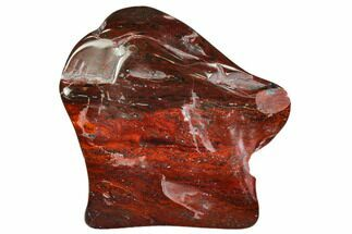 "Bargain 2"" Polished Stromatolite (Collenia) - Minnesota For Sale, #108596"