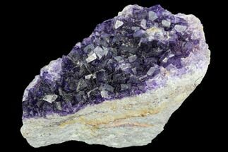 "2.6"" Purple Cubic Fluorite Crystal Cluster - Morocco For Sale, #108710"