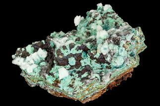 "1.9"" Rosasite, Aurichalcite and Selenite Crystal Association - Utah For Sale, #109808"