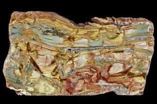 "Buy 6.1"" Polished Ibis Jasper Slab - Madagascar - #113749"