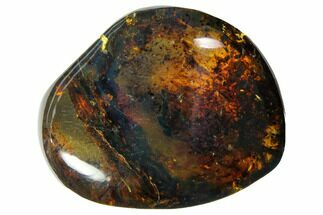 "Buy 1.3""  Polished Chiapas Amber (7 grams) - Mexico - #114778"