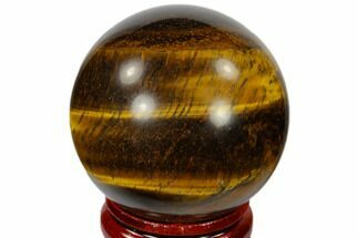 Tiger's Eye - Fossils For Sale - #116070