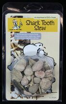 "Fossil ""Shark Tooth Stew"" Marine Fossils Kit For Sale, #117977"