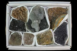 Quartz var. Amethyst - Fossils For Sale - #118200