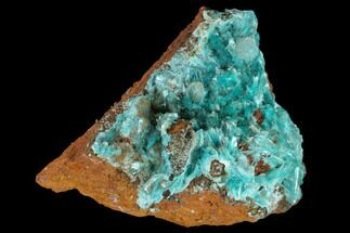 "1.8"" Fibrous Aurichalcite Crystal Cluster - Mexico For Sale, #119150"