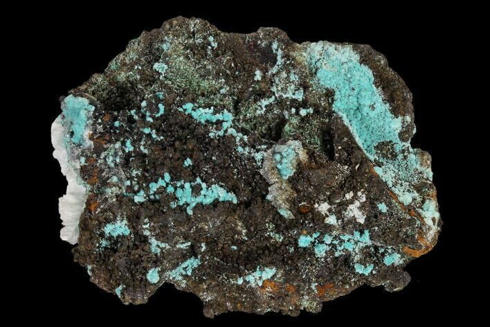 "1.7"" Aurichalcite, Rosasite and Calcite Association - Utah"