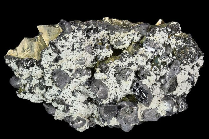 "2.7"" Galena and Octahedral Pyrite Association - Peru"