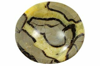 "Buy 5.6"" Polished Septarian Bowl - Madagascar - #120220"