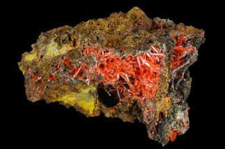 Crocoite - Fossils For Sale - #117606